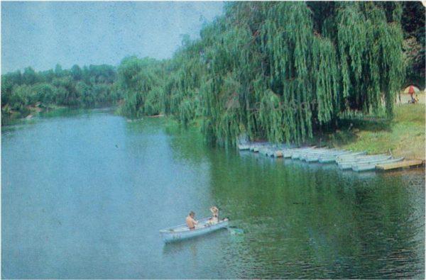Харьков.  Журавлевский гидропах, 1983 год