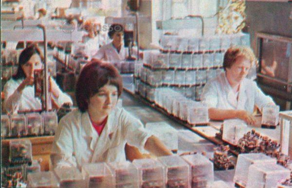 Чебоксары. Цех электро аппаратного завода, 1973 год
