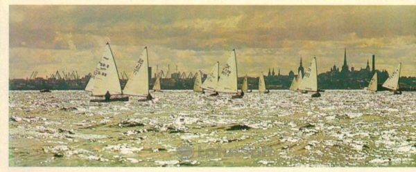 "Таллин. На старте олимпийский класс яхт ""Финн"", 1980 год"