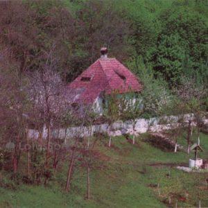 В кодрах. Молдавия. (1978 год)