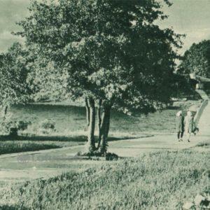 По дороге к Замковому острову, 1962 год