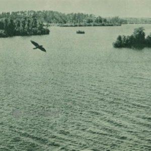 Озеро Гальве, 1962 год