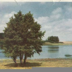 Mikhailovskoye. Lake Malenets, 1964