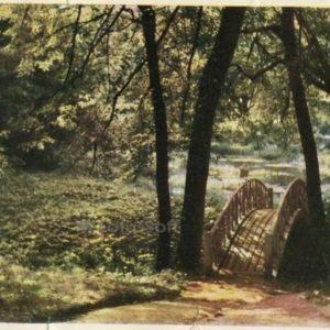 Тригорское. Уголок парка, 1964 год