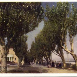 Lenin Avenue. Theodosius, 1958
