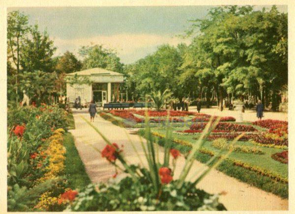 Пятигорск. Парк, 1963 год