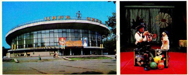 Воронеж. Цирк, 1980 год