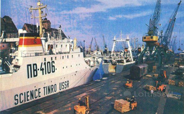 Калинград. В морском рыбном порту, 1975 год
