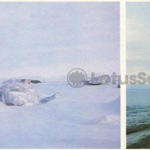 "Cape Dezhnev. Icebreaker ""Leonid Brezhnev"", 1986"