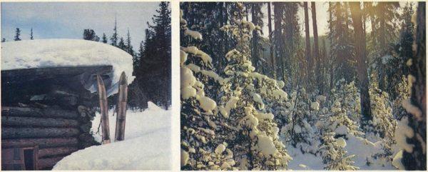 Winterland, 1978