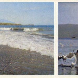 Baikal surf, 1978