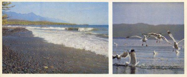 Байкальский прибой, 1978 год