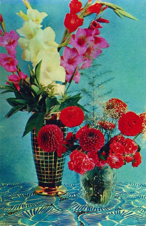 Цветы, 1971 год