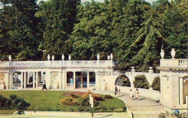 Парк дендрарий, Сочи, 1974 год