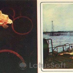 Нефтяные камни. Нефтяные трапы (1975 год)