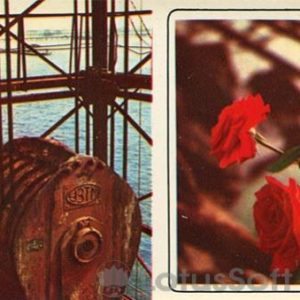 Нефтяные камни. (1975 год)