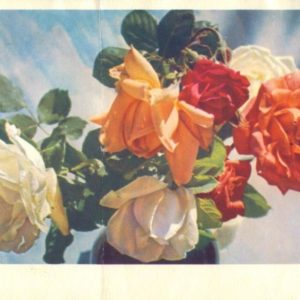 Collection of flowers, 1967