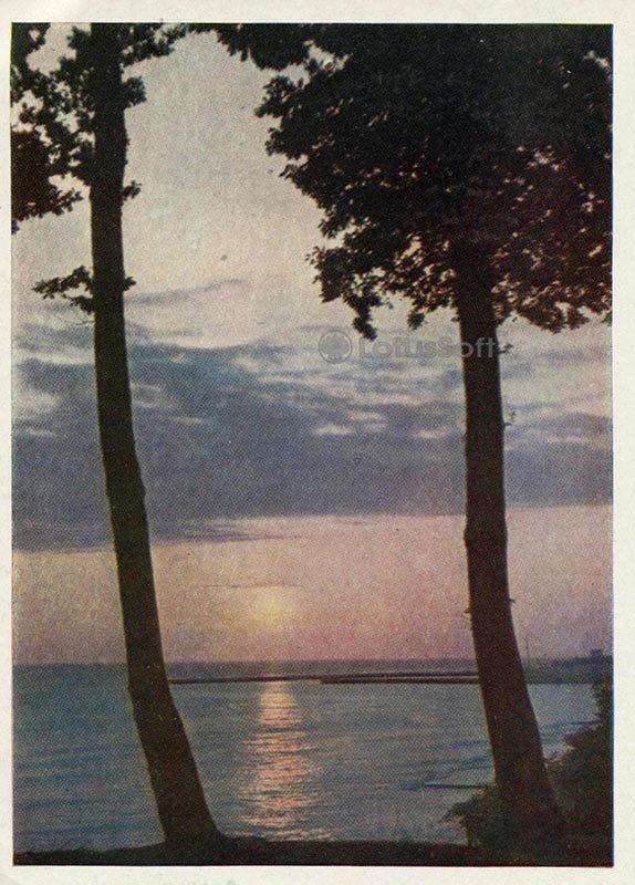 У моря. Сочи, 1958 год