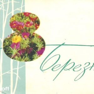 Bereznev 8, 1965