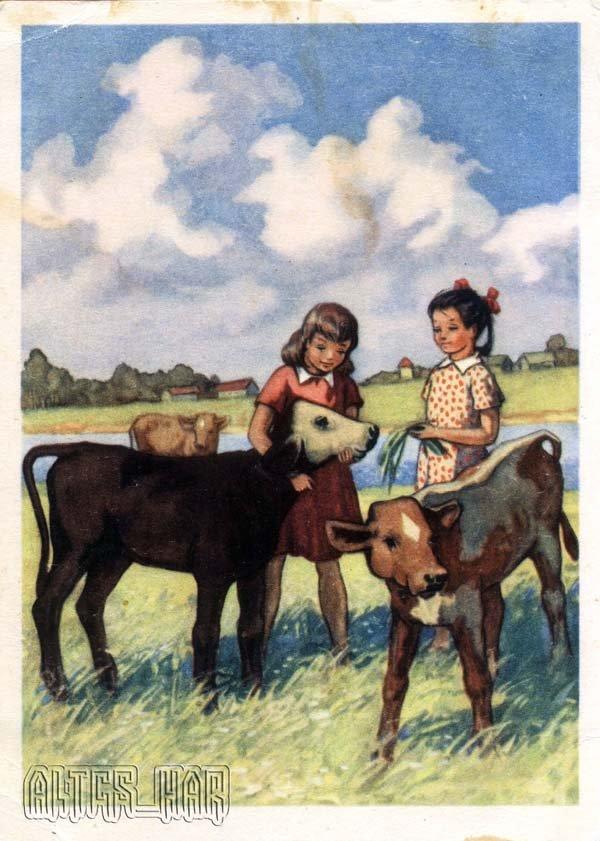 Открытки для детей. На лужайке, 1955 год