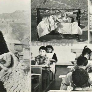 Museum Gamzat Tsadasa. Old shepherd. In the cradle. Letters Lesson, 1981