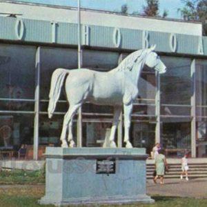 Павильон Животноводство. ВДНХ СССР, 1977 год