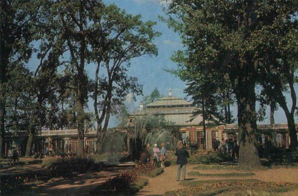 Панорама Монплезирского сада. Петродворец, 1971 год