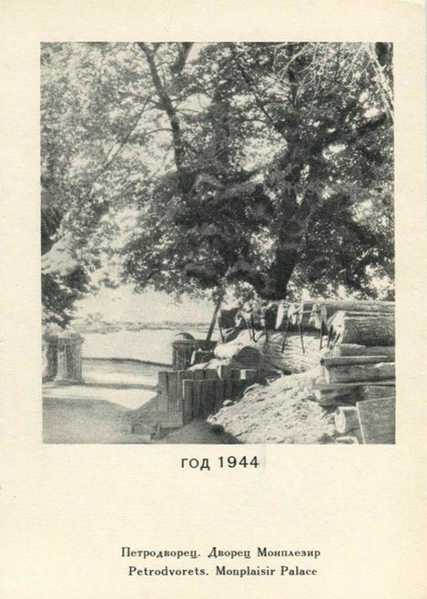 Дворец Монплезир 1944 год. Петродворец, 1970 год