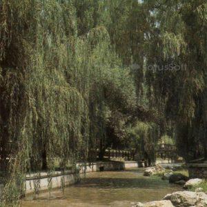 Река Салгир. Симферополь, 1984 год