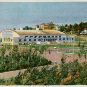 Palace of Sports. Khabarovsk, 1965