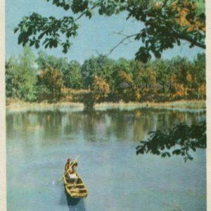 Amur duct. Fishing, 1965