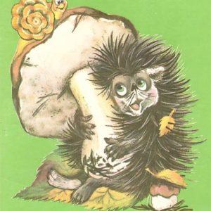 Postcard hedgehog, 1989
