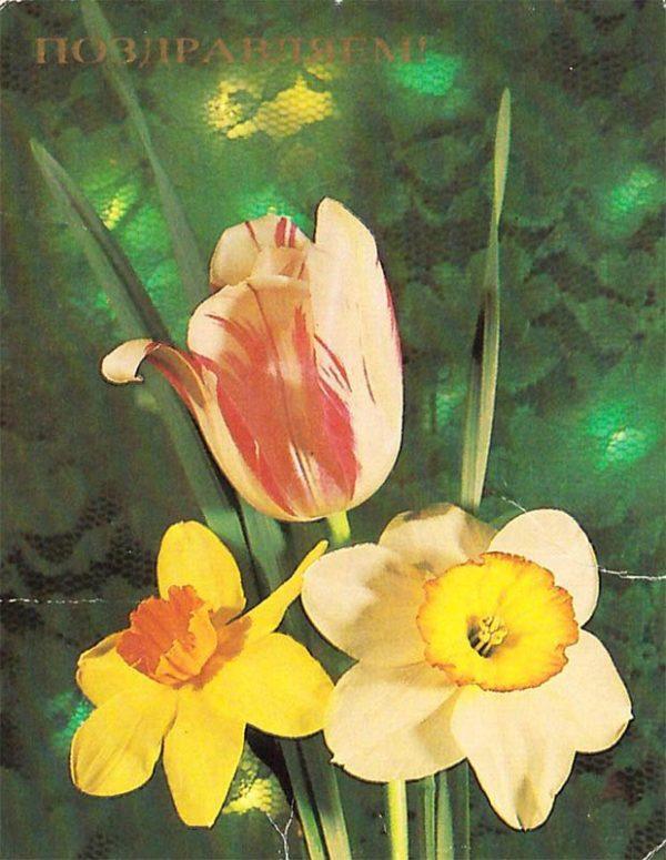 """Открытка """"поздравляю"""", 1984 год"""
