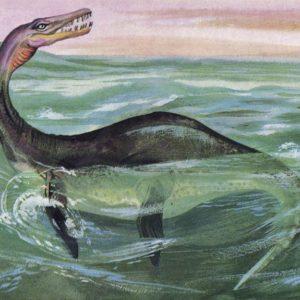 Плезиозавр, 1983 год