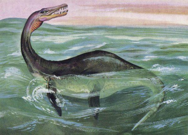 Plesiosaur, 1983