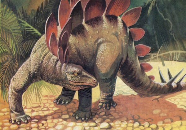 Stegosaurus, 1983