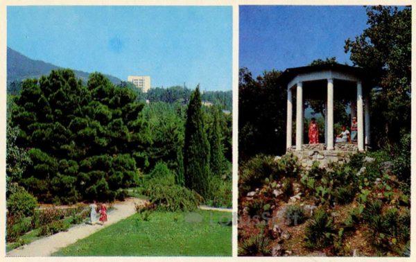 In Montedor park. Species gazebo. Nikita Botanical Garden. Crimea, 1980