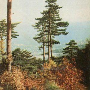 Crimean landscape. Crimea, 1964