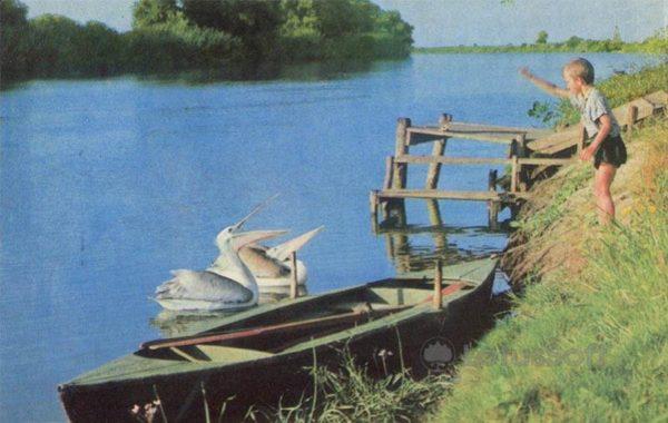Volga Delta. Reserve. Astrakhan, 1970