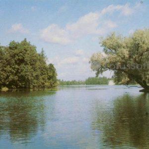 on White Lake View. Gatchina, 1984