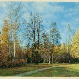 Англйская дорога в районе Белой береы. Павловск, 1972 год