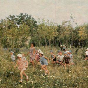 Forest park. Ryazan, 1967