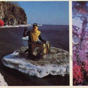 Researchers ocean. Undersea world. Vladivostok, 1981