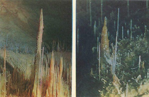 Helictites. New Athos Cave, 1980