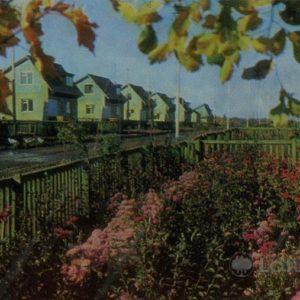 """State Farm """"Giant."""" The new settlement. Naberezhnye Chelny, 1981"""