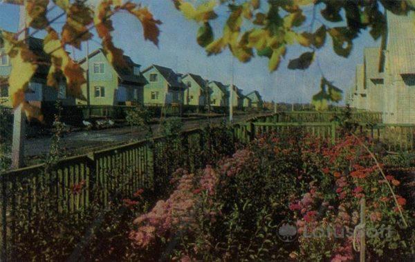 """Совхоз """"Гигант"""". Поселок Новый. Набережные Челны, 1981 год"""