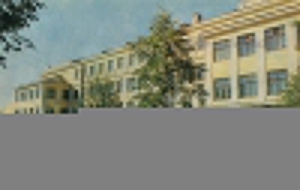 Средняя школа N1. Мичуринск, 1973 год