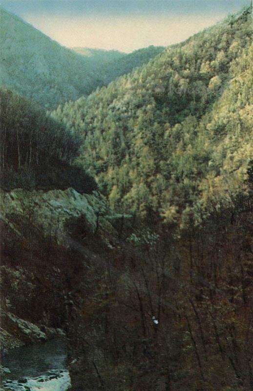 Река Белая. Майкоп, 1973 год