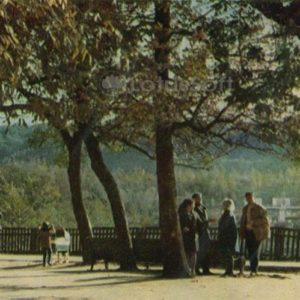 City Park of Culture and the city named after AM Gorky. Maikop, 1973