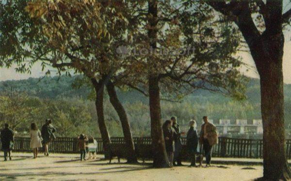 Городской парк культуры и города имени А.М. Горького. Майкоп, 1973 год